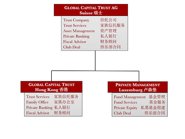 Struttura del Gruppo GCT